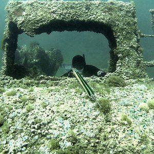 yannat06 - chasse sous marine