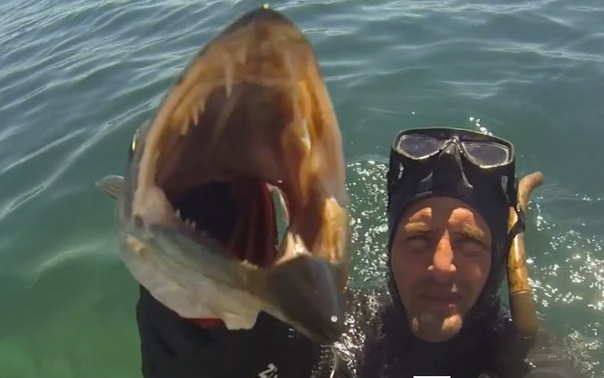 video spearfishing pirates of cannes