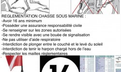Règlementation succinte chasse sous marine france