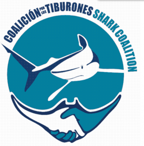 shark coalition