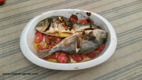 poisson au four : dorade aux tomates