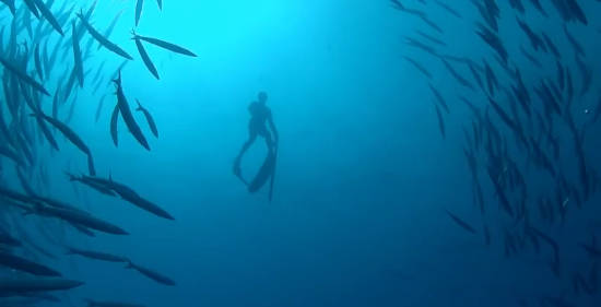 spearfishing legende
