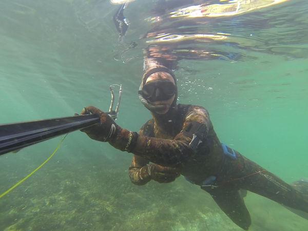 chasse sous-marine ou peche sous-marine : une passion