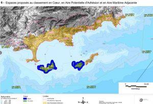 Aire Marine du Parc National de Port-Cros : Nouvelle réglementation