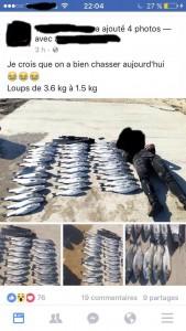 Semaine de la pêche responsable